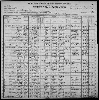 United States Census, 1900  Ohio Hamilton ED 142 Precinct G Cincinnati City Ward 17