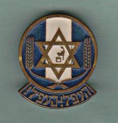 Pin for Jewish Youth Movement Founded in Europe After the Holocaust