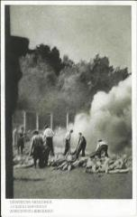 Auschwitz-Birkenau Postcard Showing a view of the Sondercommando in the Process of Cremation of Corpses on Pyres after the were Gassed