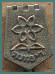 Dimona Pin
