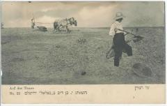 "Postcard of ""On The Threshing Floor"" in the land of Israel"